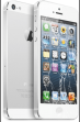 iPhone 5 Cracked Screen Repair $49
